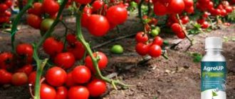 Удобрение AgroUp для растений.